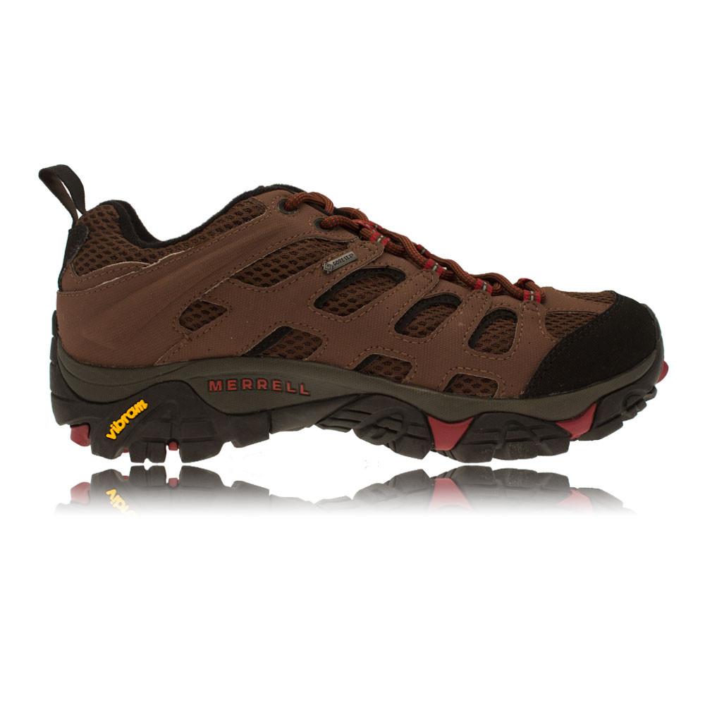 Mens Gore Tex Walking Shoes